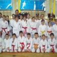 U nedjelju 02. prosinca 2012. godine u Jastrebarskom je održano županijsko prvenstvo u karateu na kojem je nastupilo oko 270 natjecatelja. Članovi Karate kluba Bregana osvojili su 11 medalja (2 zlata, 1 srebro i 8 bronci). Nešto skromniji rezultatski učinak ove godine je iz razloga što su se kadeti juniori...