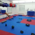 Uključite se u žensku rekreativnu grupu Karate kluba Bregana. Poboljšajte kondiciju, skinite suvišne kilograme, razgibajte i ojačajte vaše tijelo! Utorkom i četvrtkom od 20:30 do 21:30 Trener: Goran Romić, prof.