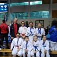 Sedam medalja u Opatiji Na turniru u Opatiji nastupilo je 41o natjecatelja iz Hrvatske i Slovenije. Članovi Karate kluba Bregana imali su vrlo dobar nastup i osvojili su 7 medalja. Najuspješnije su bile Tina Kos (zlato i bronca) i Emilija Mustafić (dvije bronce). Brončane medalje osvojili su još Dino Devetak,...